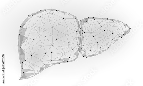 Human Liver Internal Organ Triangle Low Poly  Connected dots blue
