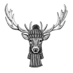 Deer wearing knitted hat and scarf