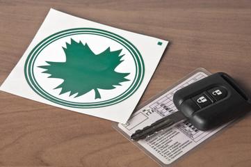 Fototapeta Young driver-green leaf obraz