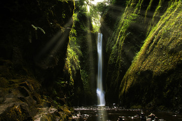 Oneonta Gorge, Oregon, United States Wall mural
