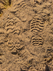 Two boots footsteps on sand