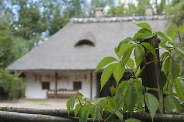 Traditional Ukrainian hut