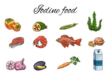 Iodine food vector sketch set, medicine infographics template, thyroid or pregnancy diet concept, persimmon, feijoa, sea bass, milk, carrot, garlic, walnut, salmon steak, pea, mussel, shrimp, seaweed