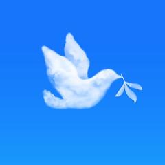 鳥の形をした雲 オリーブの葉