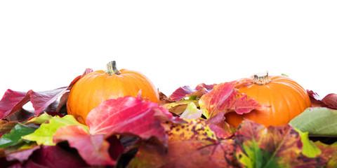 Herbstblätter und Kürbisse