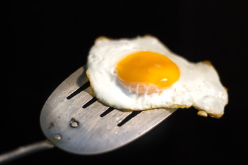 Fried egg and spatula