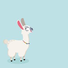 alpaca Funny animal