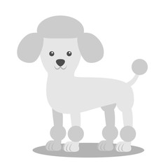 Vector illustration of a dog. Children's stylized picture. Poodle