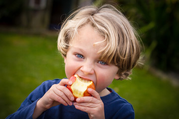 cute 5 year old child eating an apple