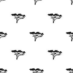 Tree in the savannah.African safari single icon in black style vector symbol stock illustration web.