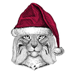 Wild cat Lynx Bobcat Trot Christmas illustration Wild animal wearing christmas santa claus hat Red winter hat Holiday picture Happy new year