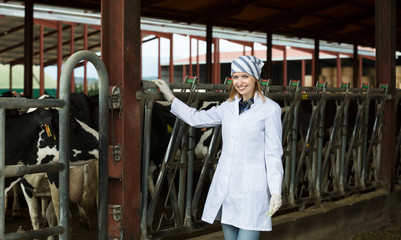Veterinary technician with dairy cattle