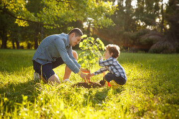 Parent and child planting tree