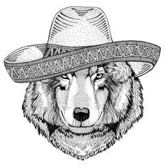 Wolf Dog Wild animal wearing sombrero Mexico Fiesta Mexican party illustration Wild west