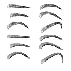 Set of Eyebrows In Different Shapes And Types