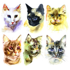 Set of watercolor Isolated hand drawn cats