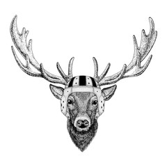 Deer Wild animal wearing rugby helmet Sport illustration