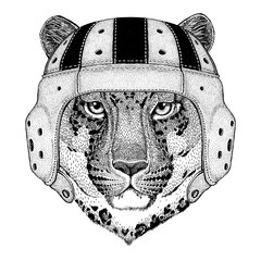 Wild cat Leopard Cat-o'-mountain Panther Wild animal wearing rugby helmet Sport illustration