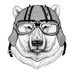 Polar bear wearing biker helmet Animal with motorcycle leather helmet Vintage helmet for bikers Aviator helmet