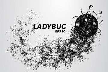 Ladybug of particles. Ladybug is made of circles and dots. Vector illustration