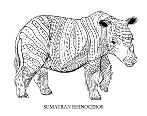 Sumatran rhinoceros. Rare animal, conservation status. Vector illustration