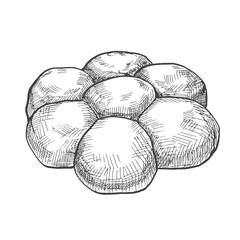 Fresh buns isolated on white background. Vector illustration of a sketch style.