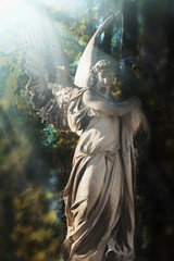 Majestic view of statue of angel illuminated by sunlight against a background of foliage. Dramatic scene. Retro and vintage styled.