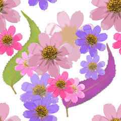 Cosmos. Seamless pattern texture of flowers. Floral background, photo collage