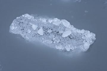 Glacier ice with sediment floating on the surface, Kenai Fjords NP, Alaska