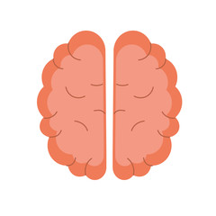 creative brain with idea over white background