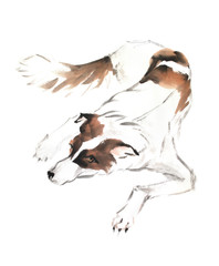 Traditional chinese ink painting. Illustration of the dog on white background for calendar, banner or placard.