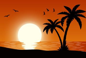 Silhouette palm tree on beach