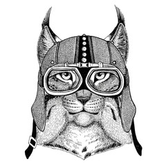 Wild cat Lynx Bobcat Trot Motorcycle, biker, aviator, fly club Illustration for tattoo, t-shirt, emblem, badge, logo, patch