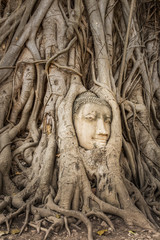 Buddha Head in Tree Roots in Wat Mahathat , Ayuthaya , Thailand