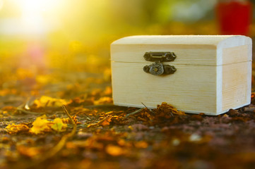 Empty Wooden Treasure Box On The Ground With Yellow Flower Drop