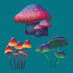 A high quality fantasy mushrooms set.