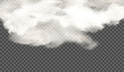 White cloud on a transparent background. Vector illustration