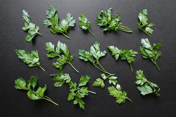 fresh parsley leaves on black background