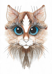 Canvas Prints Hand drawn Sketch of animals Hand drawn watercolor brown cat with blue eyes