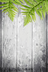 Fern leaves on artistic background with copy space