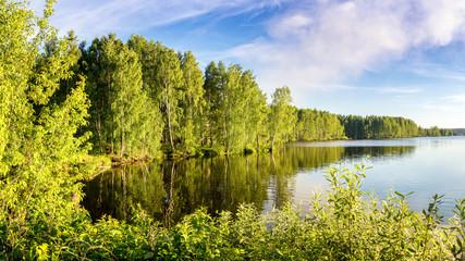 летний пейзаж на берегу реки Иртыш с растительностью, Россия, Урал