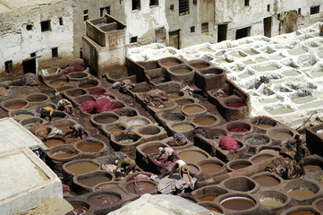 leather processing in Morocco