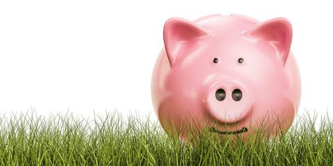 Piggy bank in the grass, 3D rendering