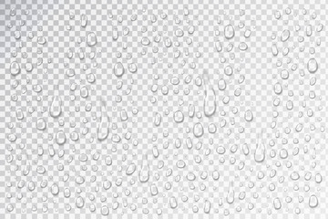 Vector set of realistic isolated water droplets on the glass on the transparent background.