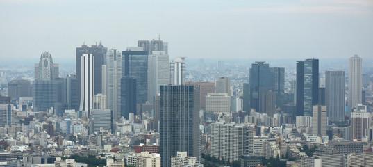 日本の東京都市景観(新宿の高層ビル群などを望む)