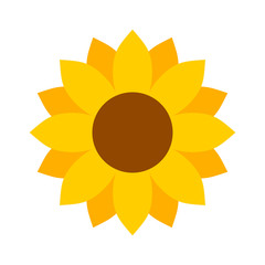 Helianthus or sunflower blossom flat color vector icon for flower apps and websites