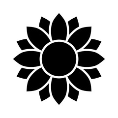 Helianthus or sunflower blossom flat vector icon for flower apps and websites