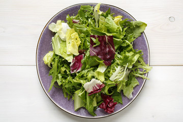fresh mixed lettuce leaves on plate on white background
