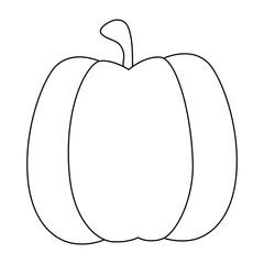 pumpkin vegetable icon over white background vector illustration