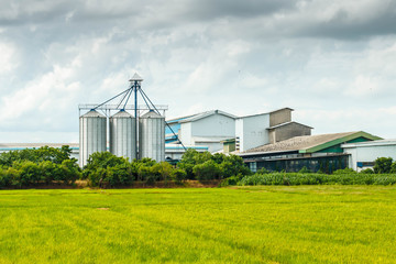 Agricultural Silos - Building Exterior, Storage and drying of grains, against the blue sky with rice fields.